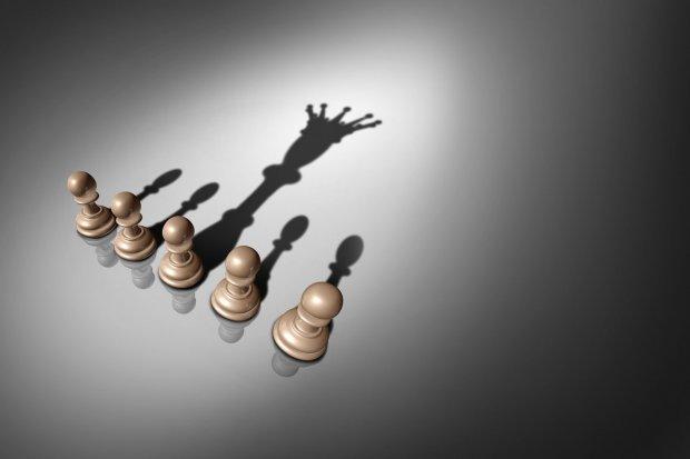 Chess shadow