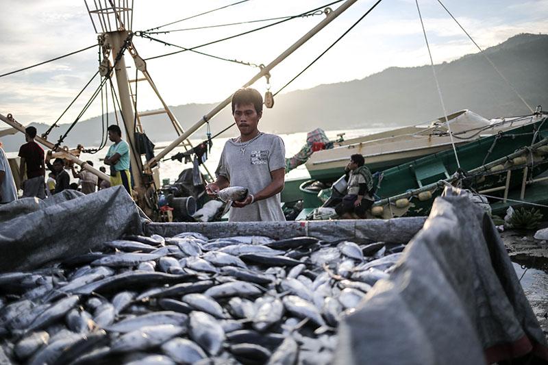 Penangkapan Ikan di Bitung
