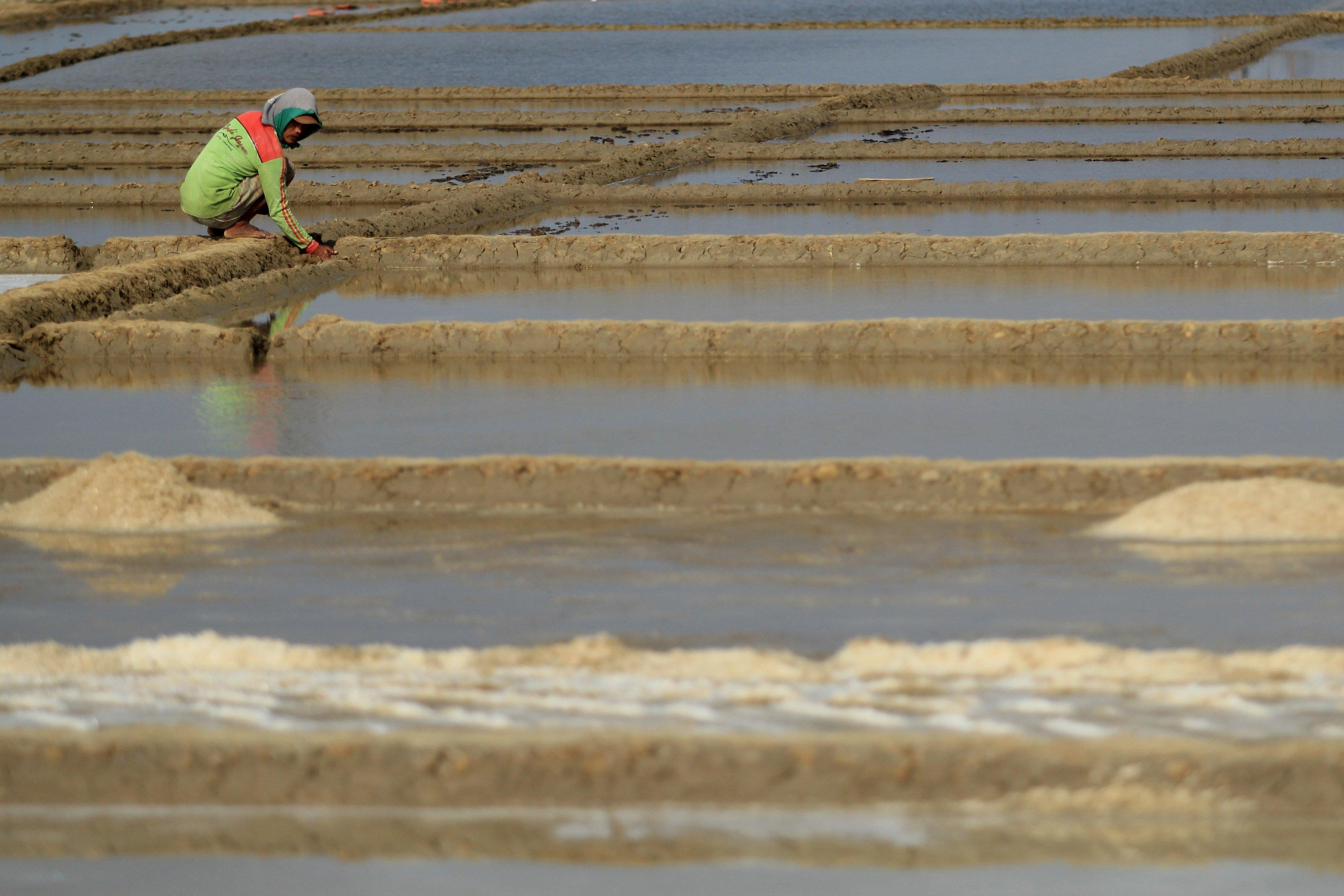 Petani garam was-was akan masuknya garam impor, yang dikhawatirkan akan menekan harga kembali rendah, mereka berharap pemerintah mengeluarkan kebijakan yang tepat agar tidak terjadi kelangkaan garam di pasaran, namun juga melindungi petani yang menggantungkan hidupnya dari produksi garam.