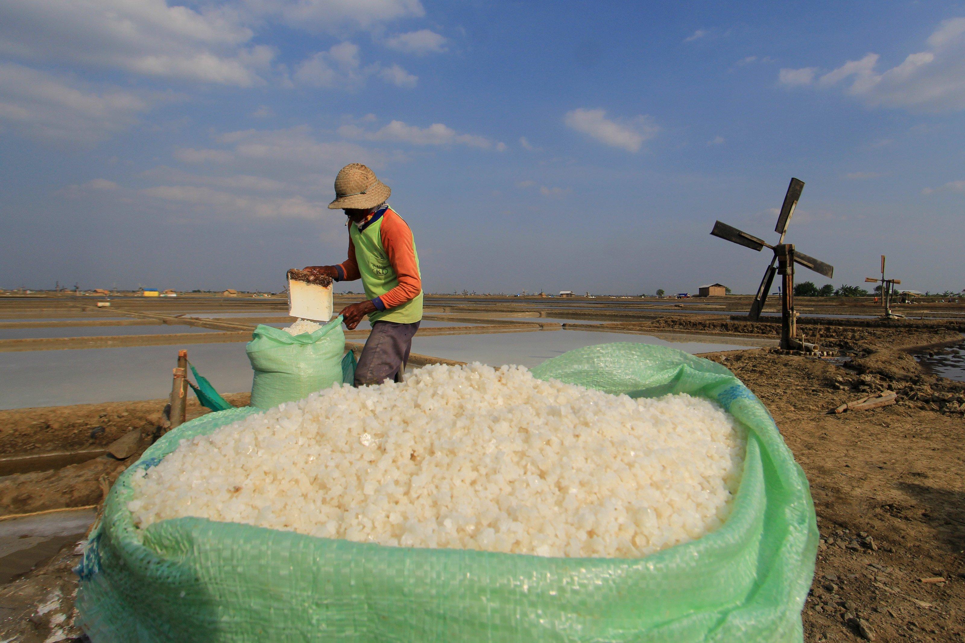 Di tingkat petani harga garam berada pada kisaran Rp3000 per kilogram untuk kualitas standar, sementara untuk kualitas super Rp4000 per kilogram, harga yang fantastis untuk sekilogram garam, padahal di tahun sebelumnya hanya Rp300 per kilogram.