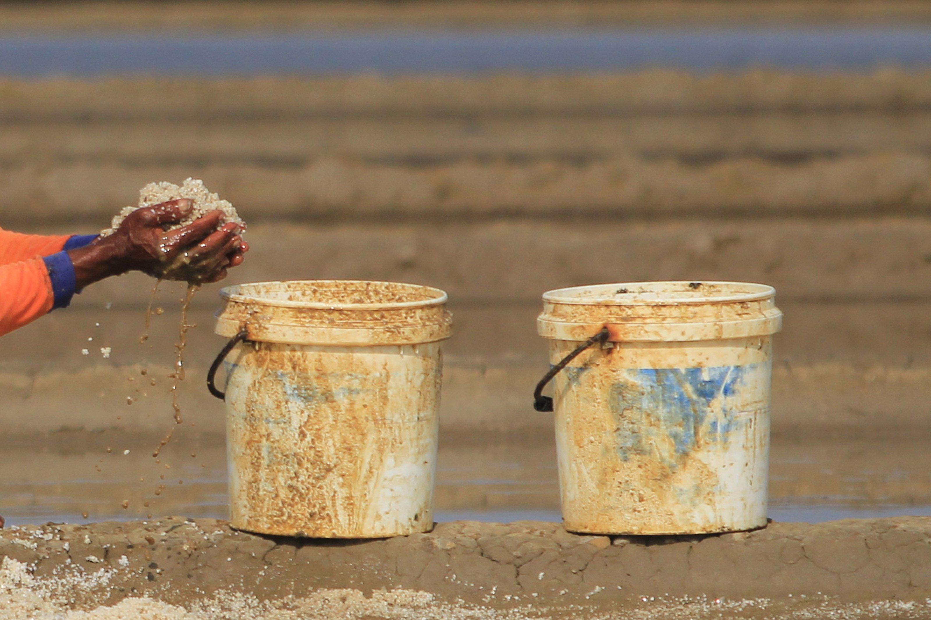 Di tengah langkanya persediaan garam di pasaran, petani garam kini menikmati tingginya harga di pasaran.