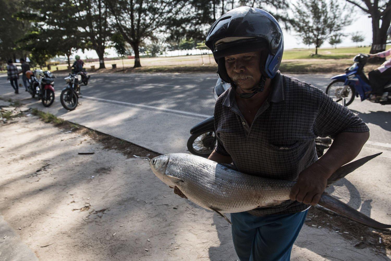 Warga membawa ikan Bandeng laut di kota Ranai, Kabupaten Natuna, Kepulauan Riau, Sabtu (29/7).