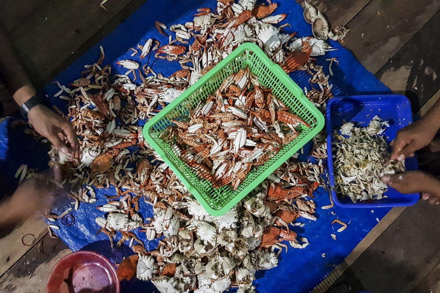 Nelayan mengupas kepiting rajungan di desa Sebala, Batu Gajah, Kabupaten Natuna, Kepulauan Riau, Kamis (27/7).