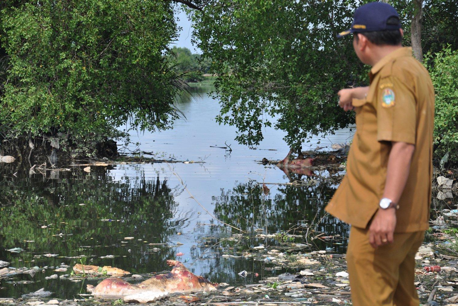 Dinas Ketahanan Pangan dan Peternakan Sumatra Utara mencatat, sebanyak 4.682 ekor babi dilaporkan mati akibat virus kolera babi dan demam babi afrika. Namun, angka itu dilaporkan bertambah sejak kemarin menjadi 5.800 ekor babi