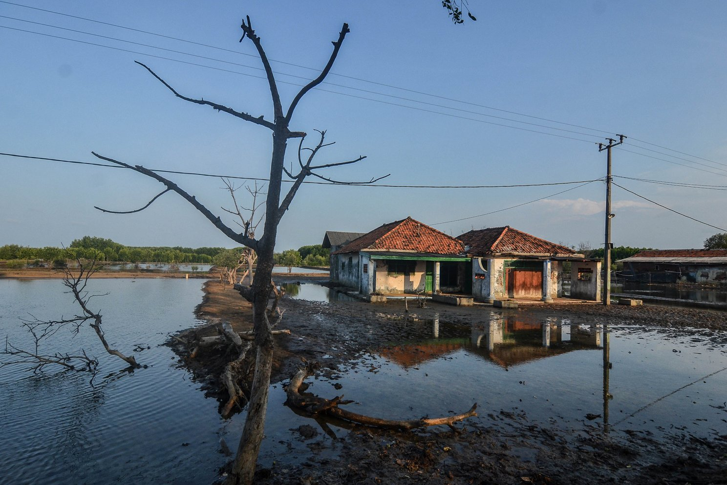 Ratusan rumah di kampung tersebut rusak dan dikosongkan para penghuninya lantaran terkena abrasi sejak 12 tahun lalu.