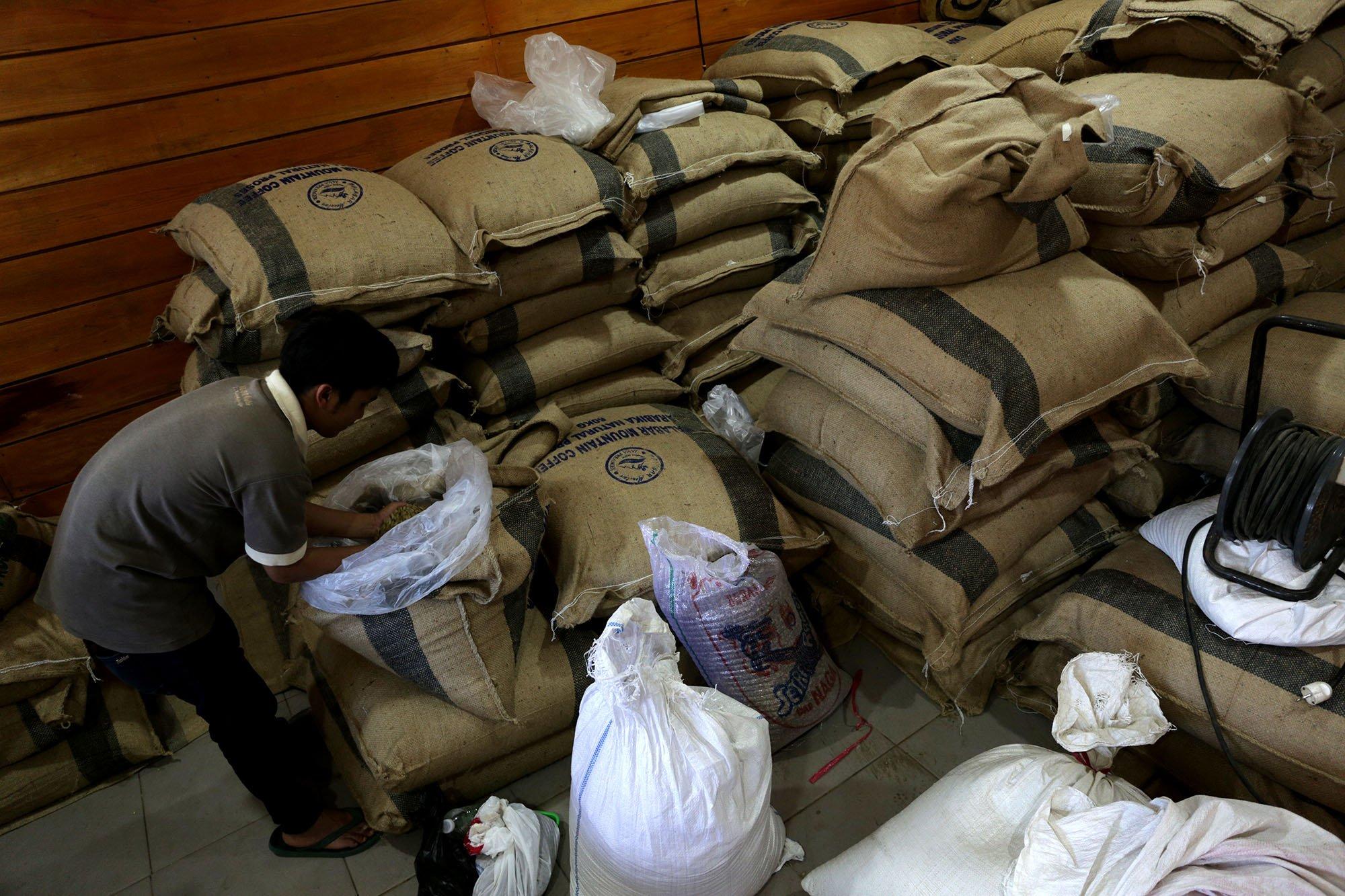 Pekerja memeriksa persediaan biji kopi Mountain Malabar Coffee, Bandung, Jawa Barat (15/11/2019).