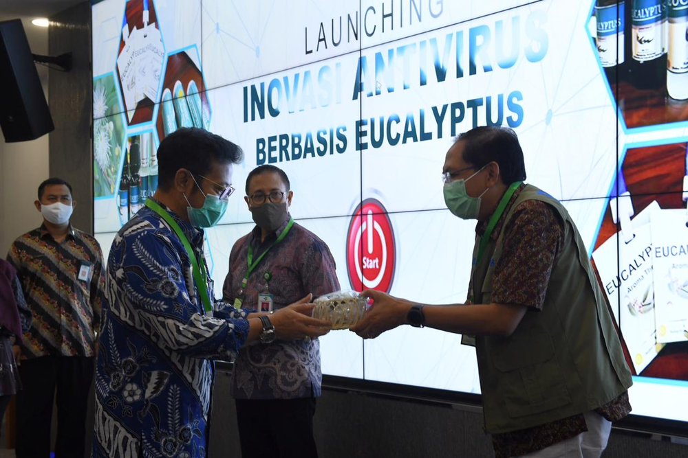 Kementan inovasi antivirus berbasis eucalyptus