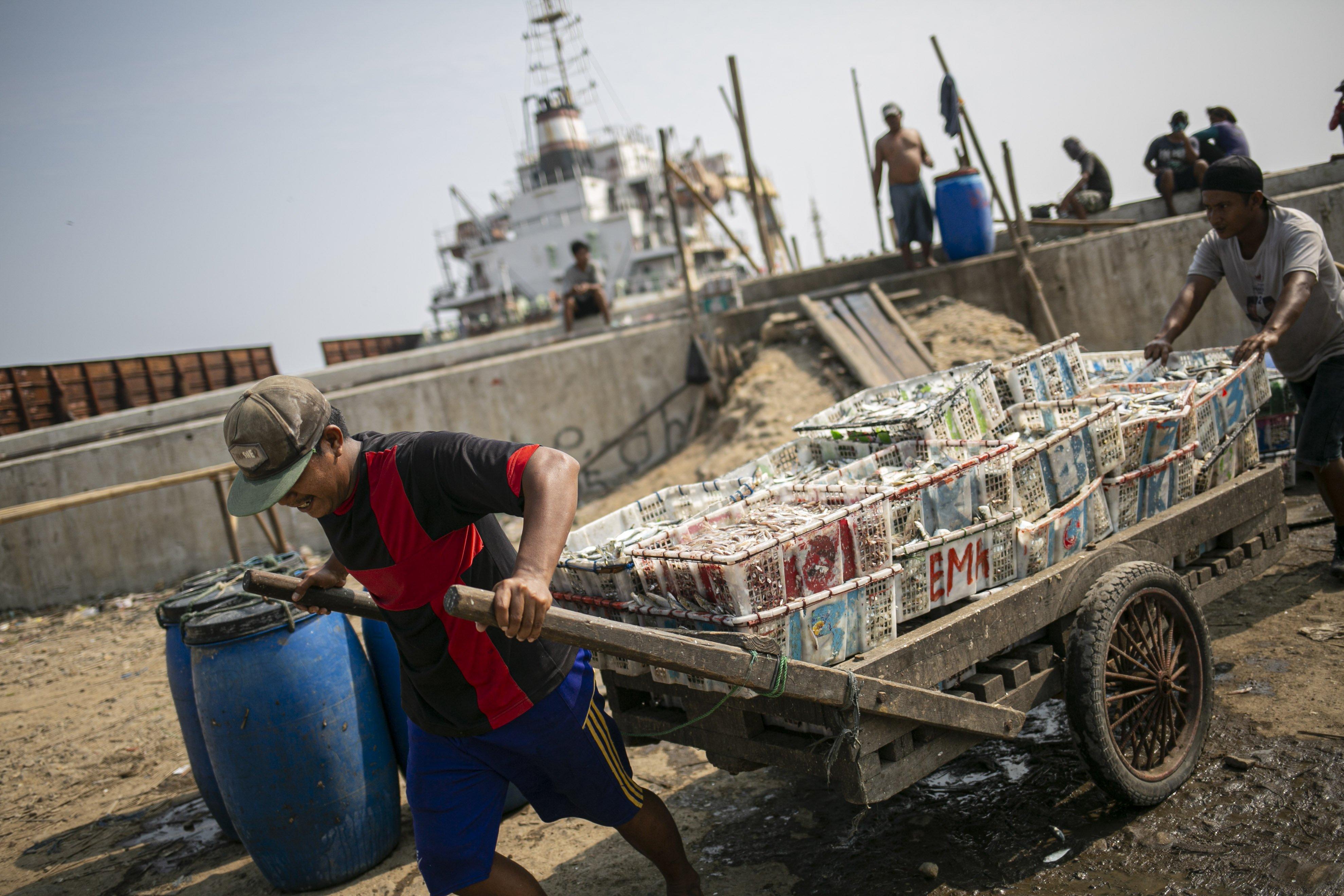 Sejumlah nelayan mengangkut ikan hasil tangkapan di Kampung Nelayan, Jakarta Utara, Minggu (9/8/2020). Kesatuan Nelayan Tradisional Indonesia (KNTI) mengklaim penurunan penjualan tangkapan nelayan mencapai 21 persen dan pendapatan hingga 90 persen akibat merebaknya virus covid-19.