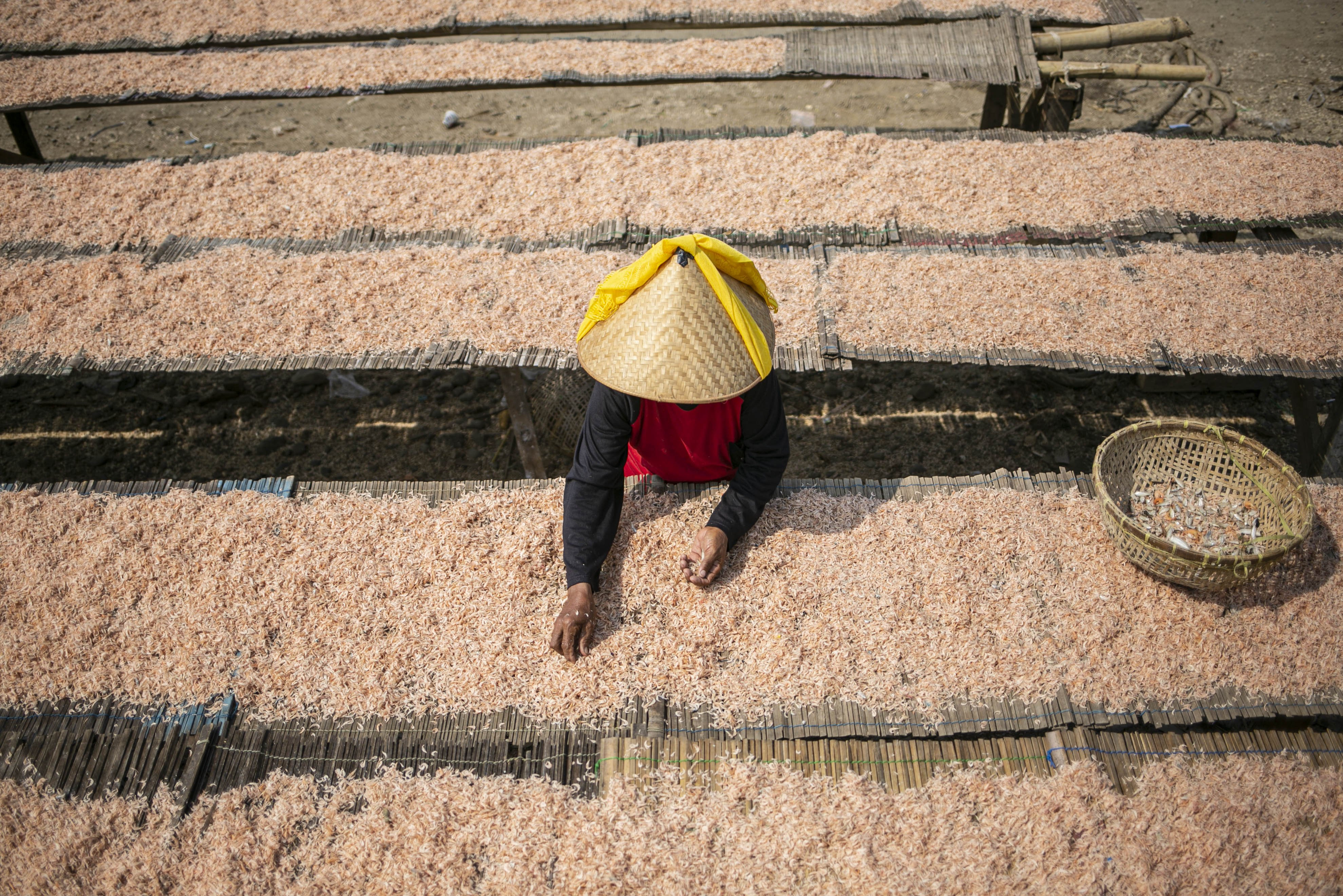 Warga menjemur ikan di Kampung Nelayan, Jakarta Utara, Minggu (9/8/2020). Kesatuan Nelayan Tradisional Indonesia (KNTI) mengklaim penurunan penjualan tangkapan nelayan mencapai 21 persen dan pendapatan hingga 90 persen akibat merebaknya virus covid-19.