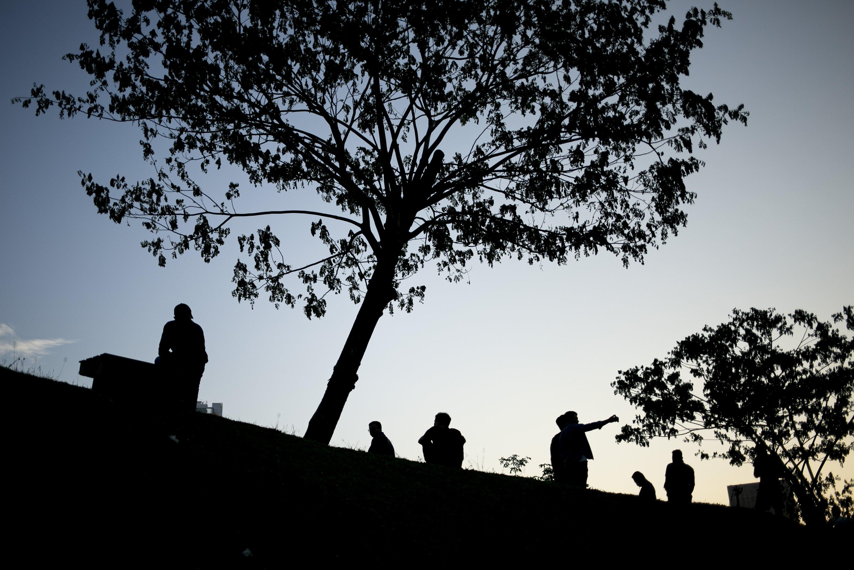 Warga beraktivitas di Hutan Kota Gelora Bung Karno (GBK), Senayan, Jakarta, Sabtu (22/08/2020). Pengunjung memanfaatkan pemandangan dan suasana Hutan Kota GBK untuk menghabiskan libur akhir pekan di tengah pandemi Covid-19, dengan tetap menerapkan protokol kesehatan seperti berjaga jarak dan menggunakan masker.