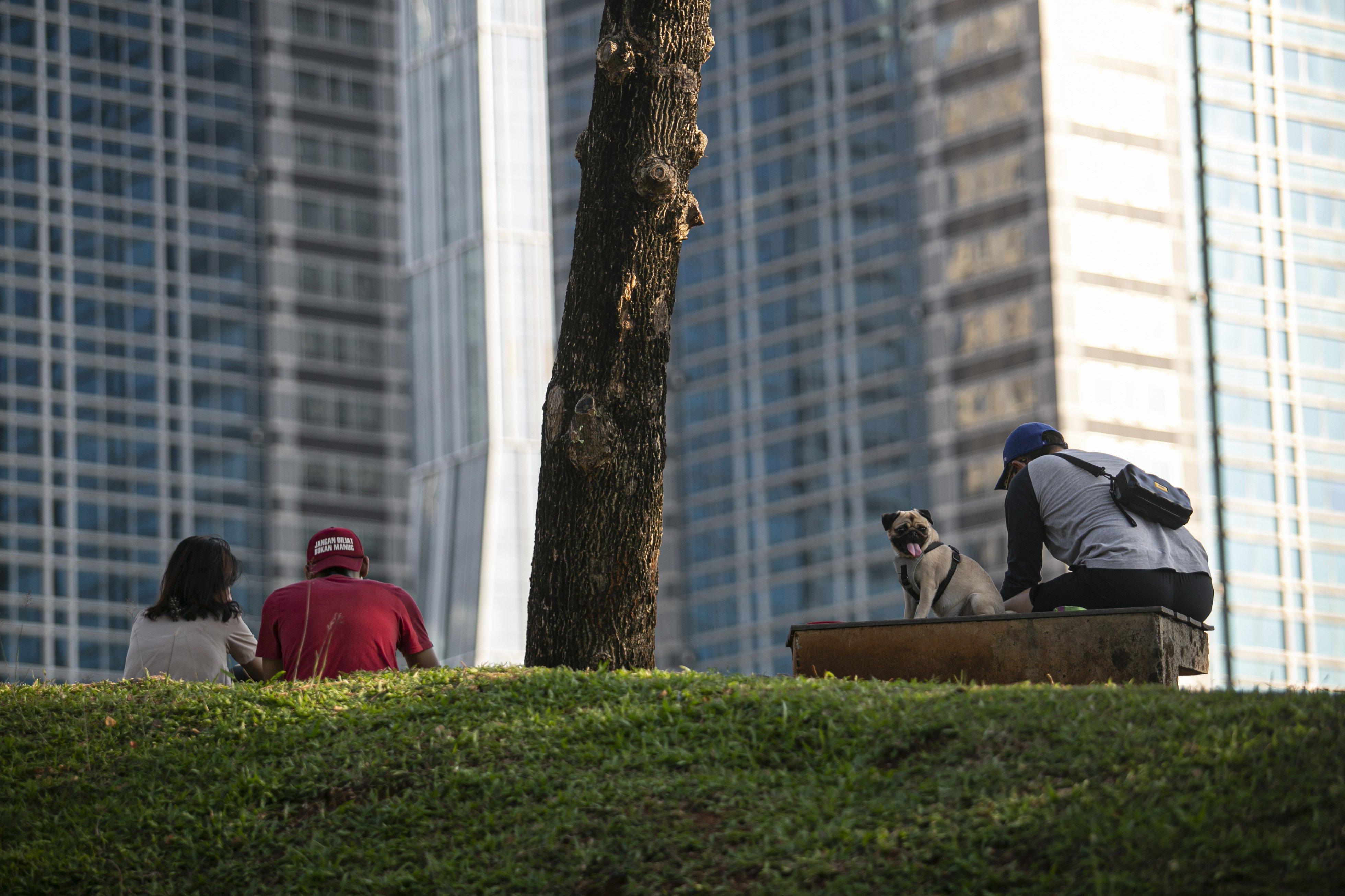 Warga beraktivitas di Hutan Kota Gelora Bung Karno (GBK), Senayan, Jakarta, Sabtu (22/08/2020). Pengunjung memanfaatkan pemandangan dan suasana Hutan Kota GBK untuk menghabiskan libur akhir pekan di tengah pandemi Covid-19.