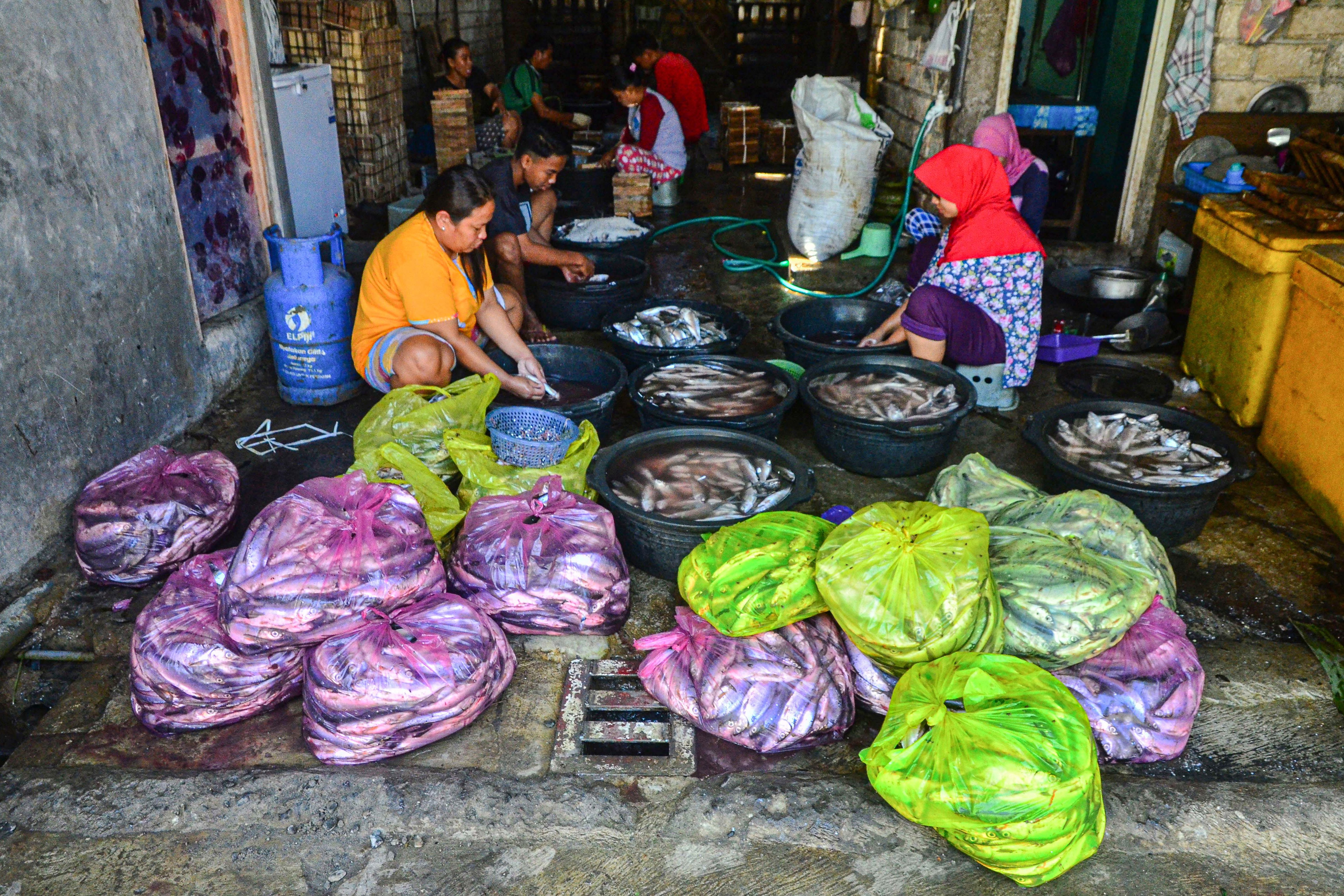 Pekerja membersihkan ikan bandeng di Desa Dukutalit, Juwana, Pati, Jawa Tengah.\r\n