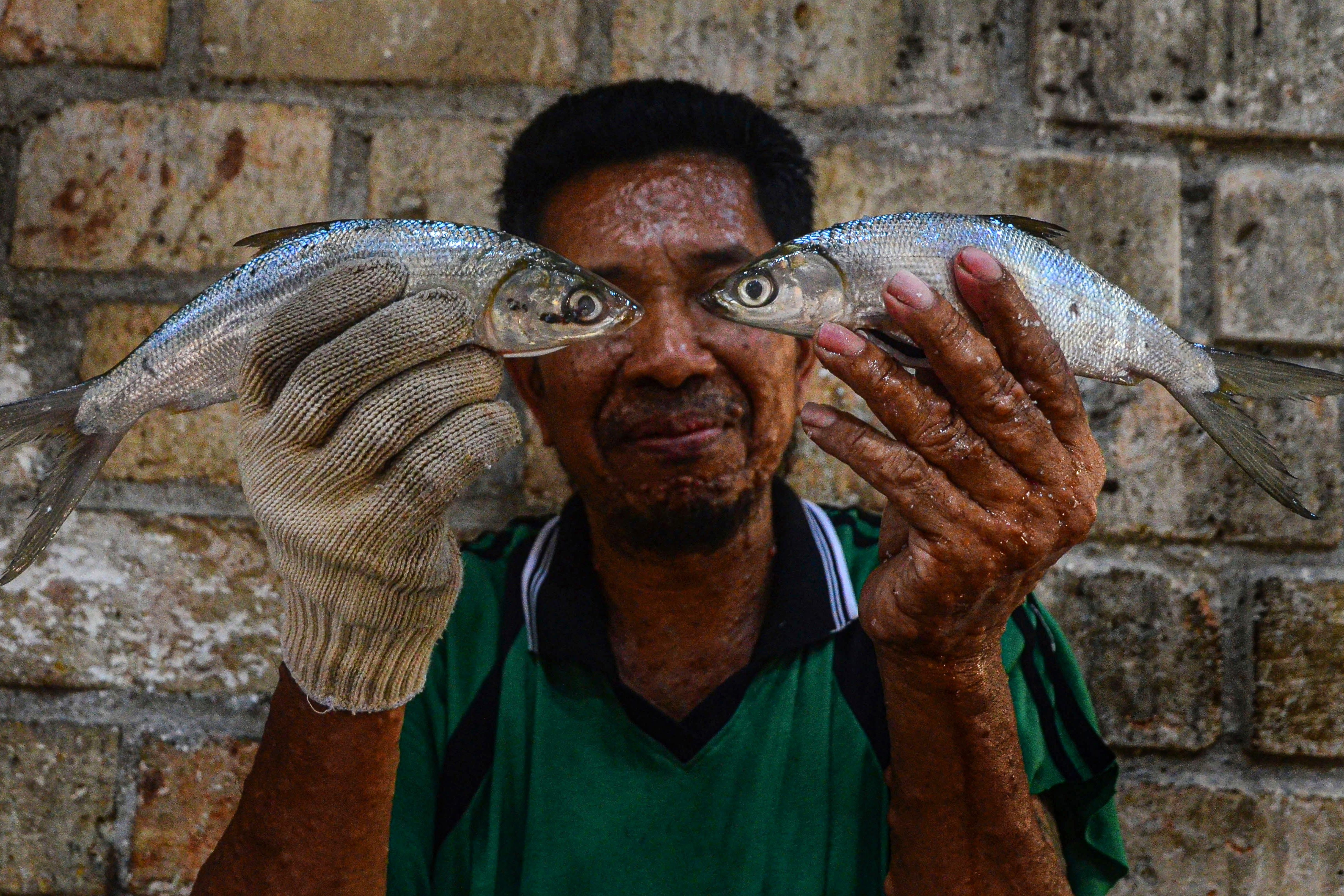 Pekerja menunjukkan ikan bandeng di Desa Dukutalit, Juwana, Pati, Jawa Tengah.