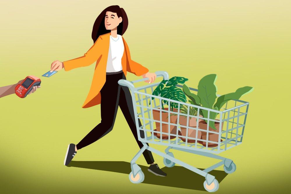 penjualan tanaman hias, hobi tanaman hias, tanaman hias, pandemi corona