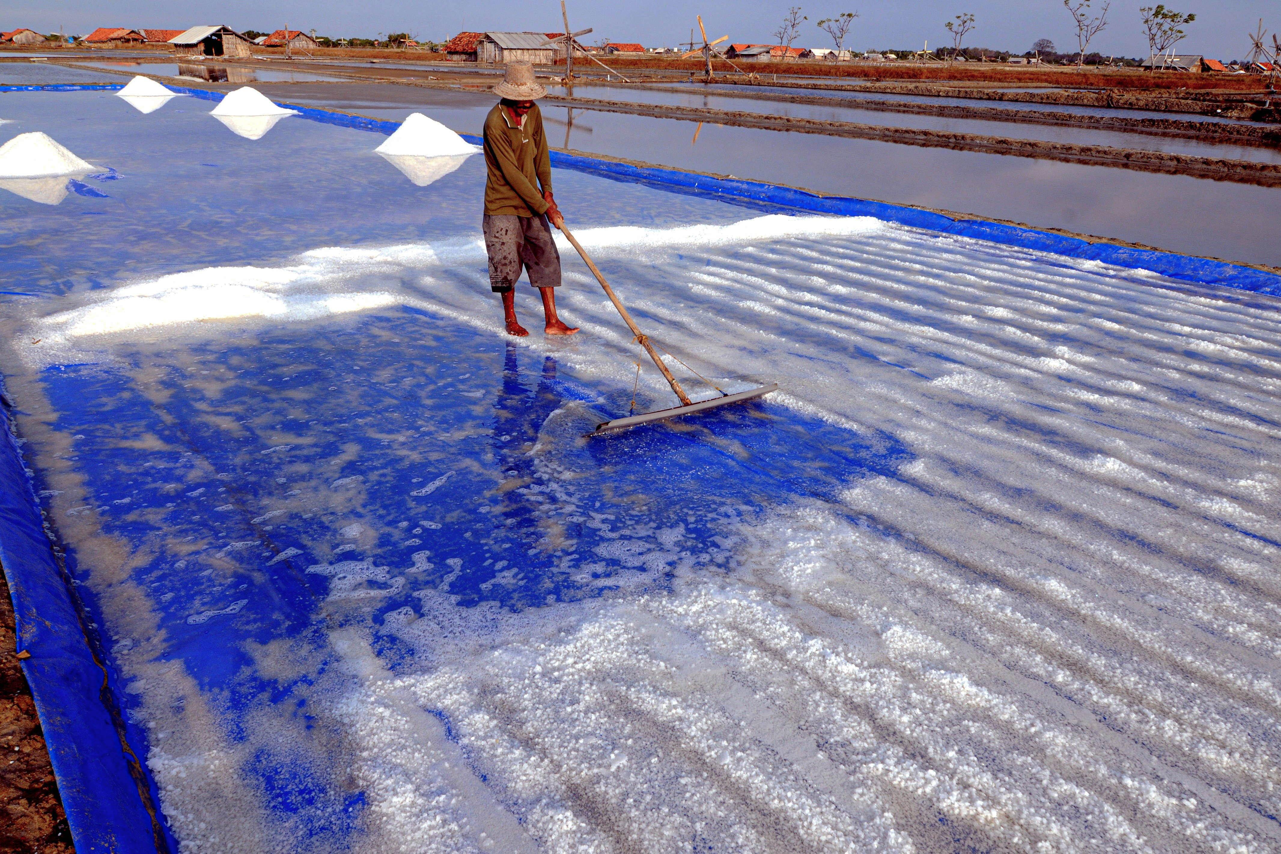 Petani memanen garam di lahan yang menggunakan teknik geomembran di Desa Bunder, Pademawu, Pamekasan, Jawa Timur.