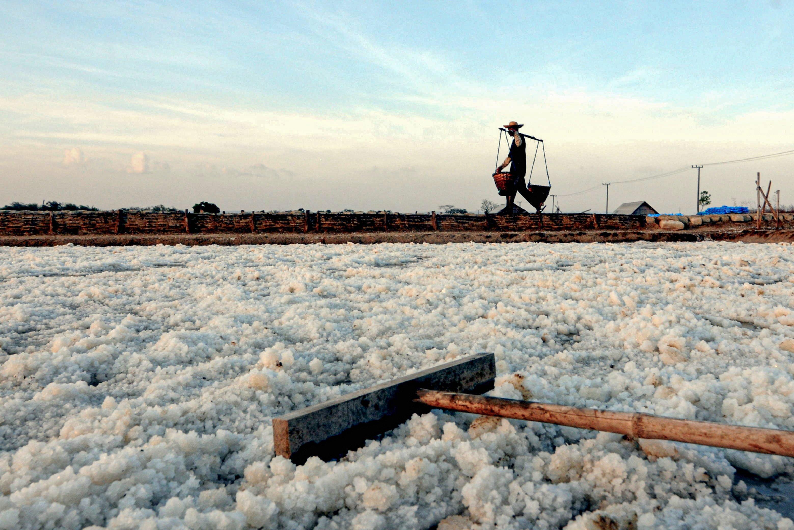 Petani memanen garam di Desa Bunder, Pademawu, Pamekasan, Jawa Timur.\r\n
