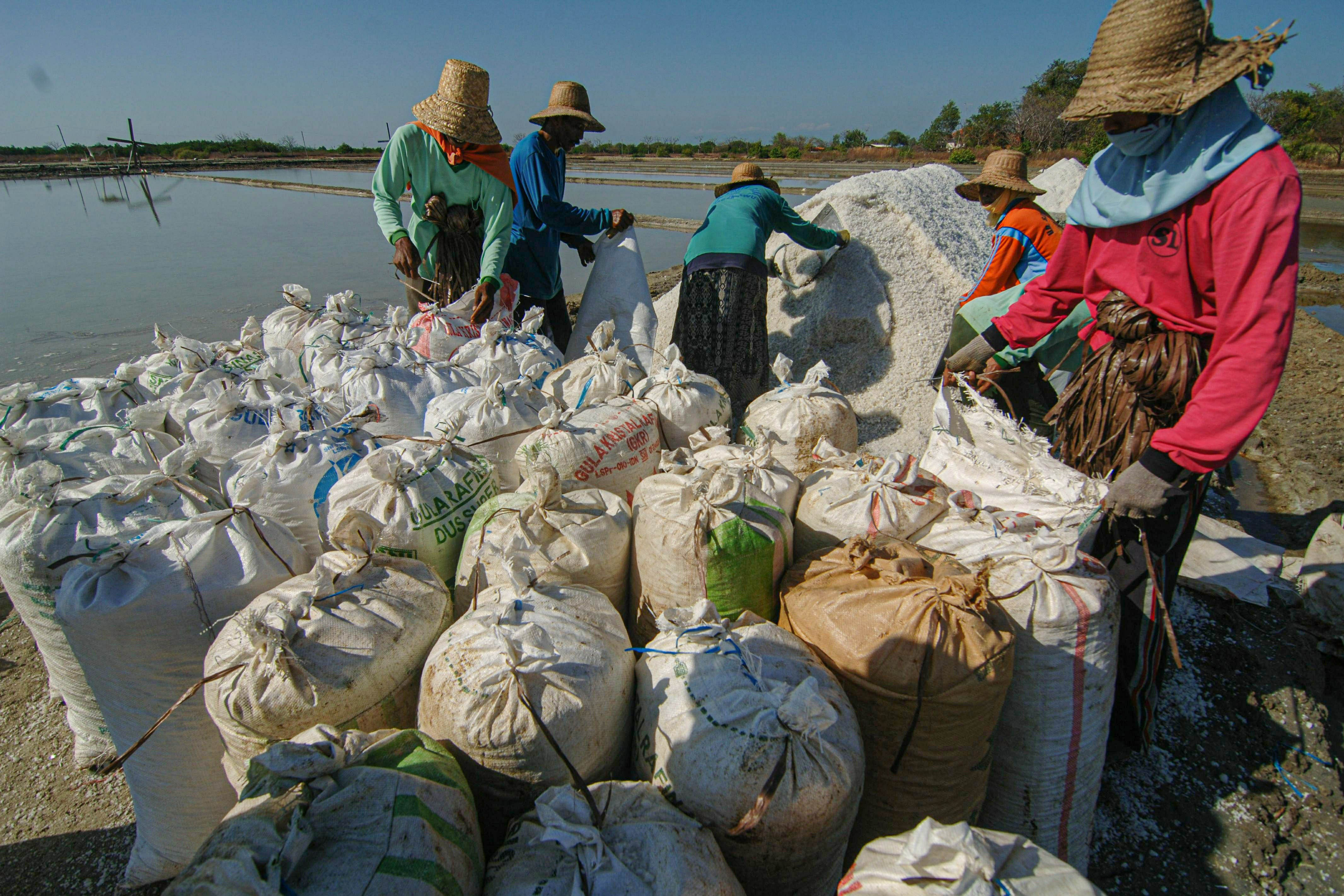 Pekerja mengemas garam ke dalam karung di Desa Bunder, Pademawu, Pamekasan, Jawa Timur.