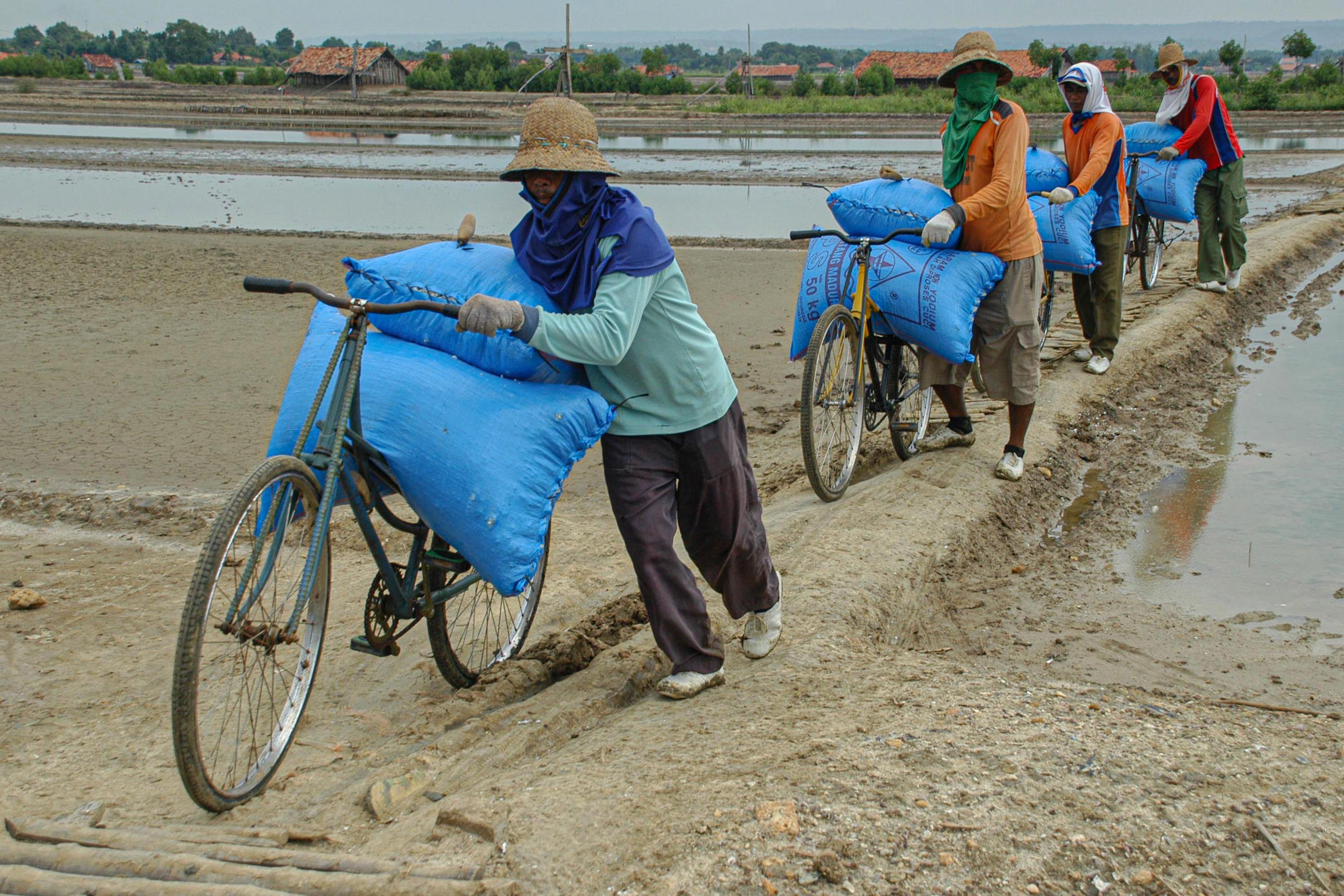 Buruh mengangkut garam untuk dipindahkan ke atas truk di Desa Bunder, Pademawu, Pamekasan, Jawa Timur.