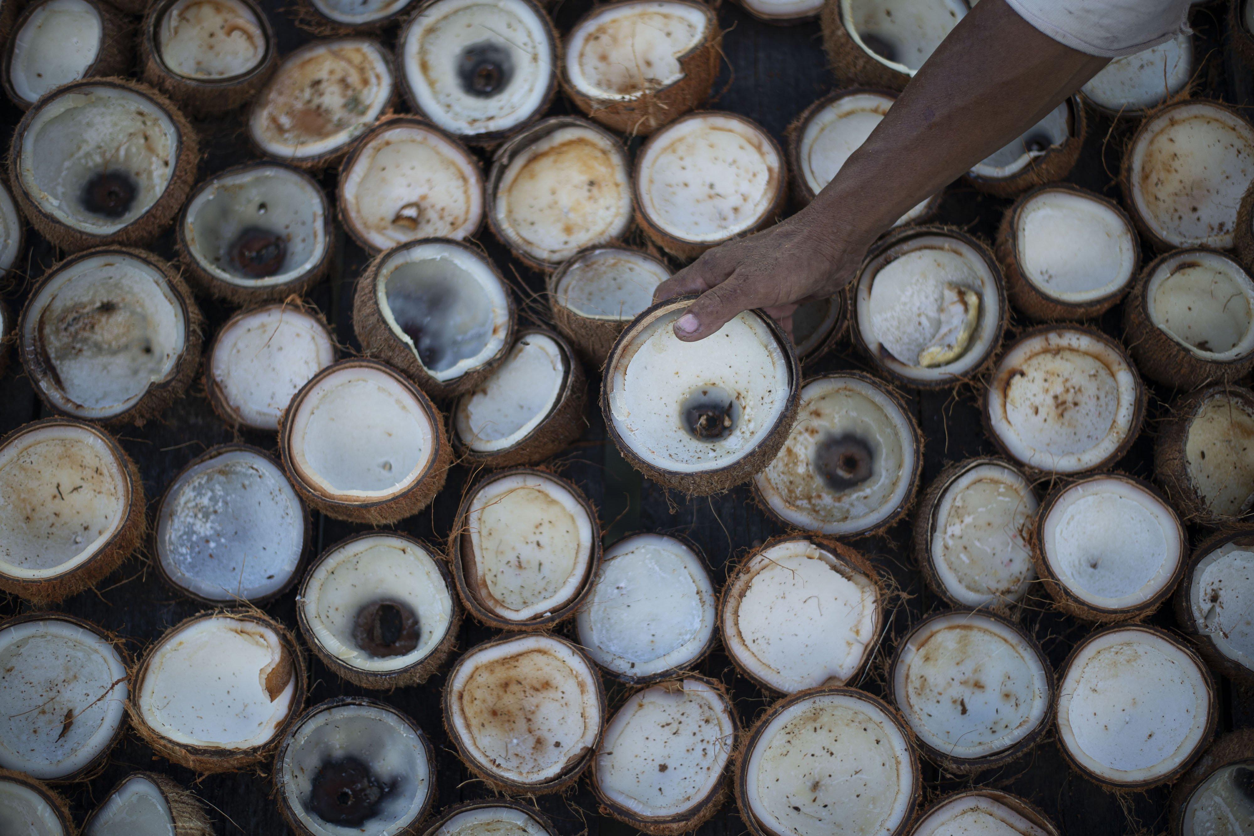 Warga mengolah kelapa menjadi kopra di Desa Air Payang, Pulau Laut, Kabupaten Natuna, Kepulauan Riau.