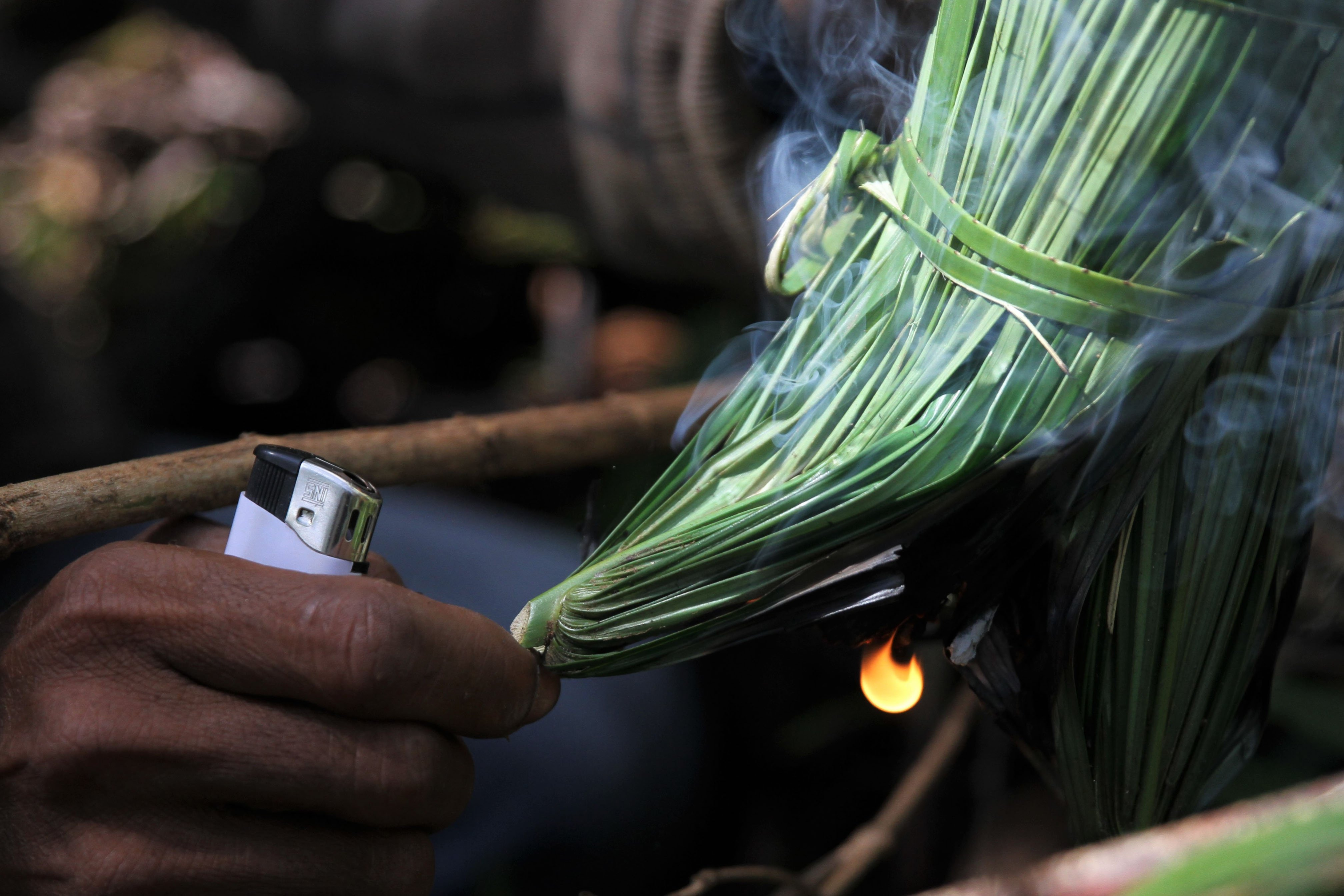 Triono membakar dedaunan kering dan basah agar lebah lari saat mengenai asap di kawasan Gunung Landono di Desa Landono 2, Kecamatan Landono, Konawe Selatan, Sulawesi Tenggara.