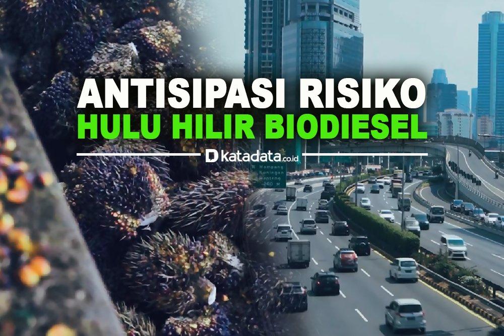Anitipasi Risiko Hulu Hilir Biodiesel