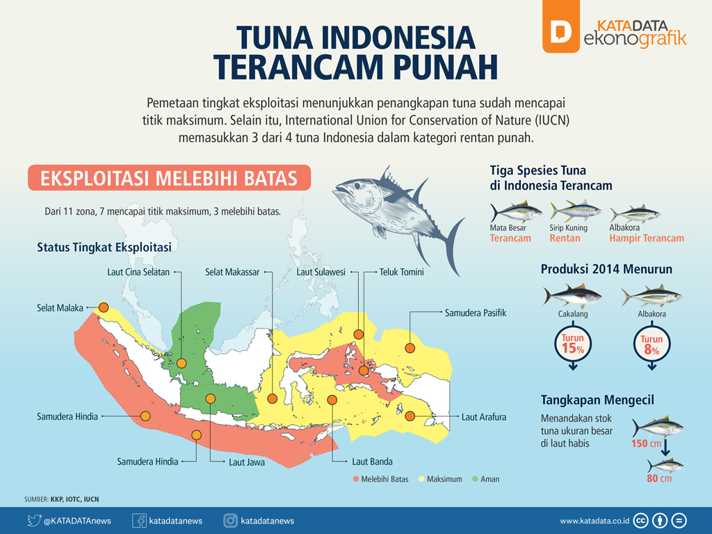 Tuna Indonesia Terancam Punah (Rev)