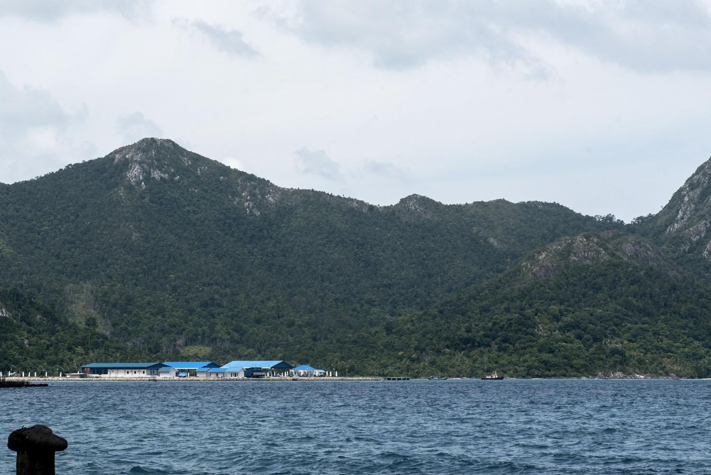 Pusat Perikanan Nasional