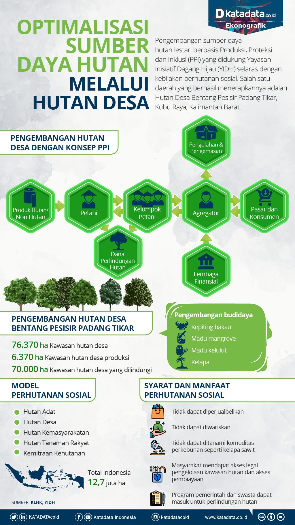 Optimalisasi Sumber Daya Hutan Melalui Hutan Desa