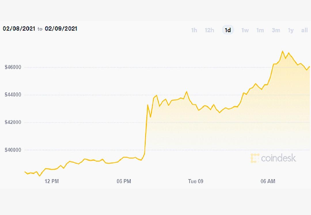 Perkembangan harga bitcoin setelah Tesla membeli mata uang kripto ini pada Senin (8/2/2021).