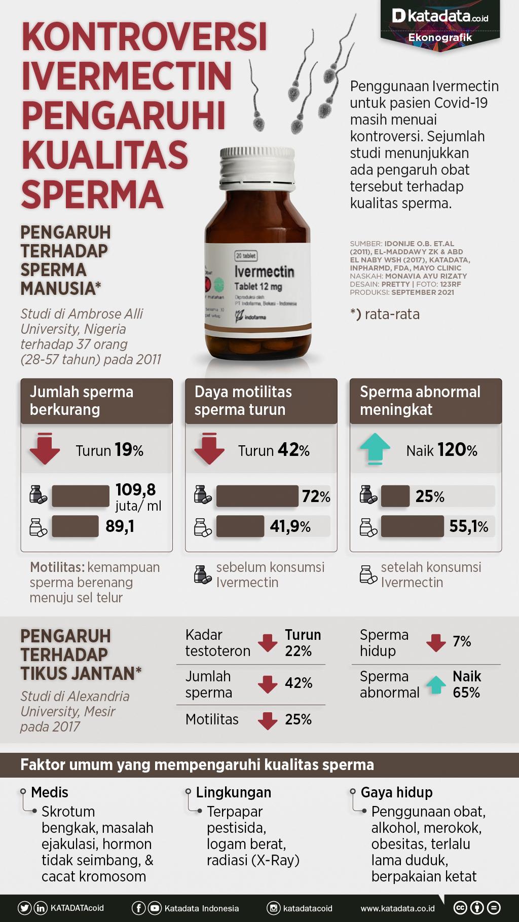 Infografik_Kontroversi ivermectin pengaruhi kualitas sperma