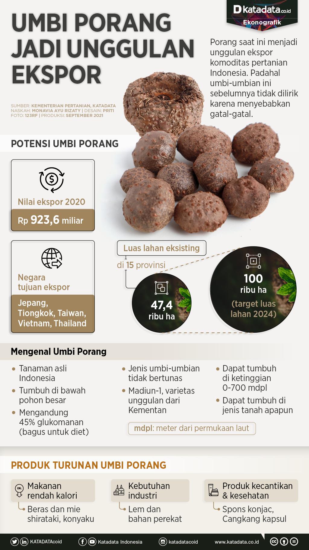 Infografik_Umbi porang jadi unggulan ekspor