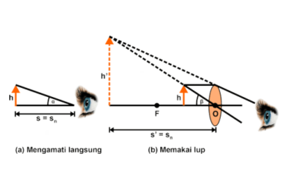Materi Fisika Alat Optik Lup