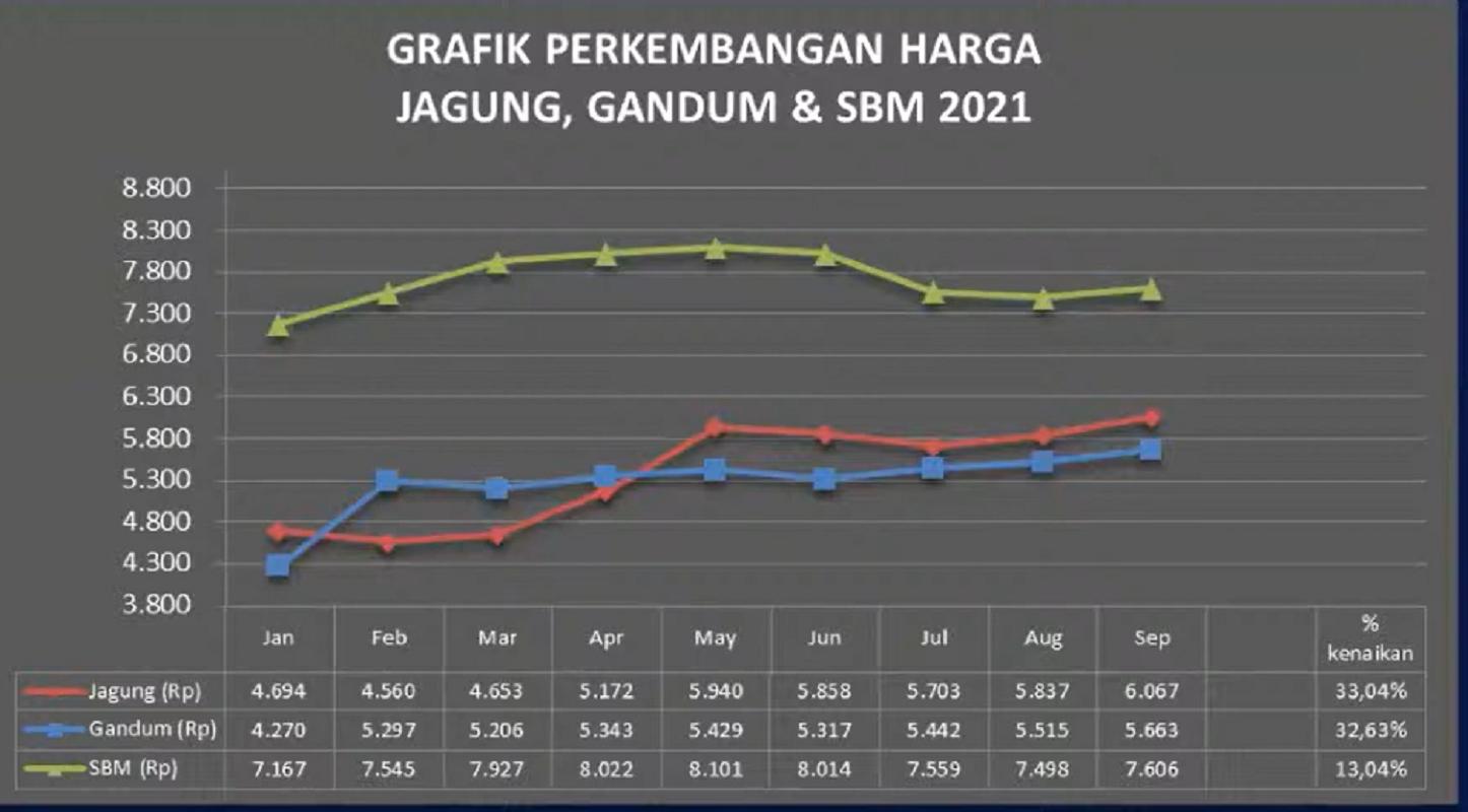 Grafik perkembangan harga jagung, gandum dan soybean meal