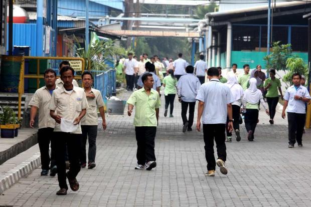 Ilustrasi, aktivitas pekerja pabrik. Indef menilai pemerintah perlu memberikan insentif bagi perusahaan yang menyerap banyak tenaga kerja.