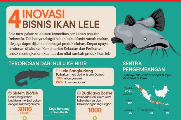 4 Inovasi Bisnis Ikan Lele Infografik Katadata Co Id