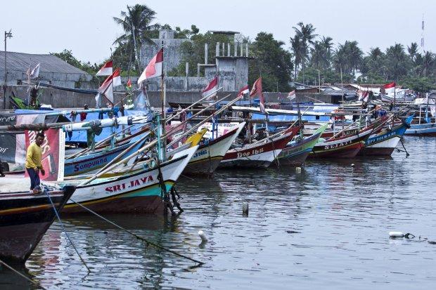 Nelayan ikan