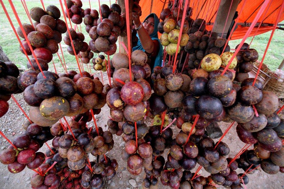 ekspor buah, ekspor sarang burung walet, minyak kelapa sawit, ekspor Indonesia 2018, ekspor indonesia 2019