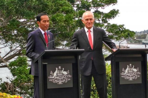 Jokowi - Turnbull
