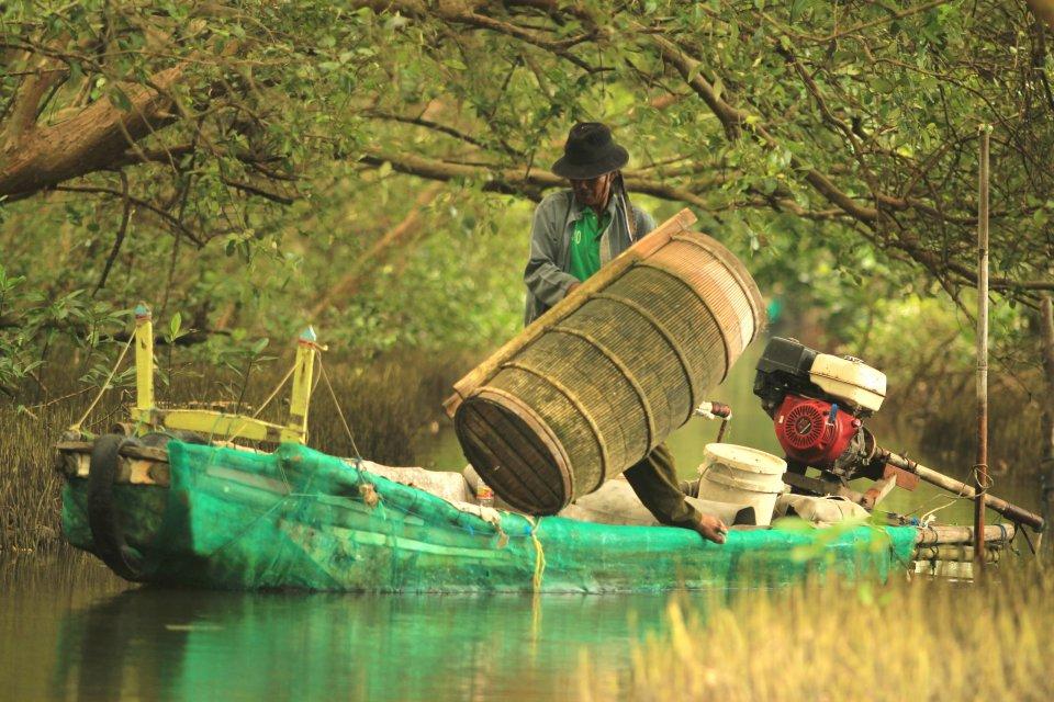 Nelayan Udang