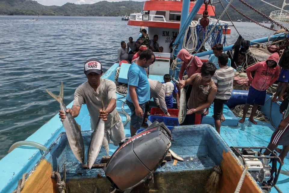 Bongkar muat ikan