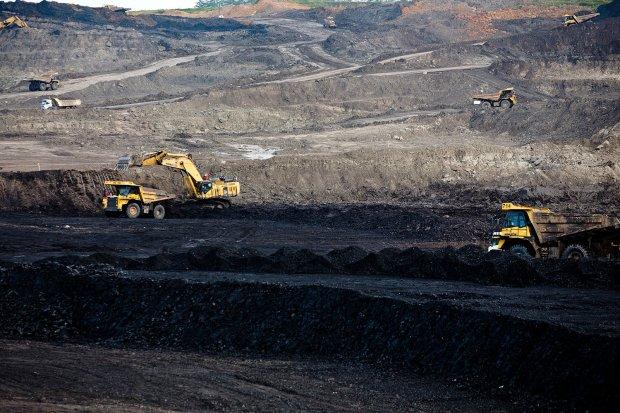 batu bara, omnibus law, uu cipta kerja, ppn batu bara