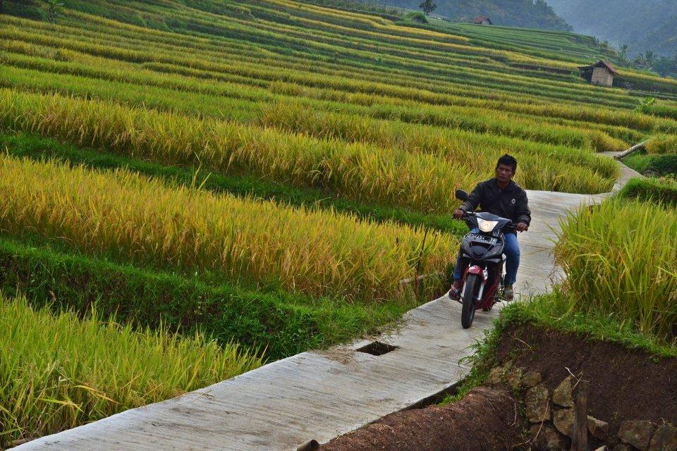 Desa siluman, dana desa, penyaluran dana desa