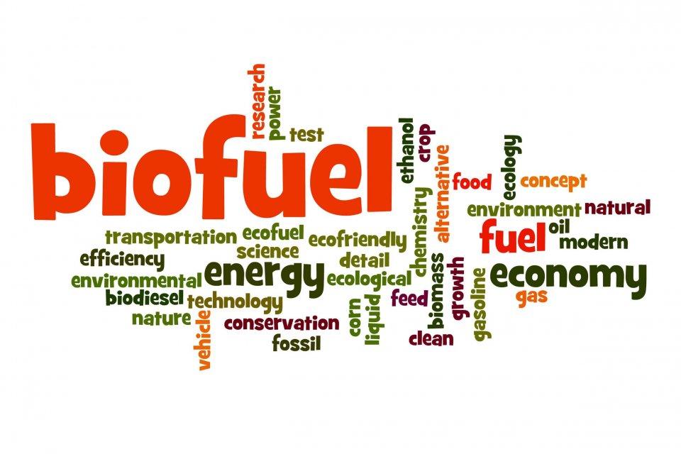 Biodiesel, Jokowi, Biodiesel Jokowi, B50, Jokowi B50, minyak kelapa sawit, B30, B20