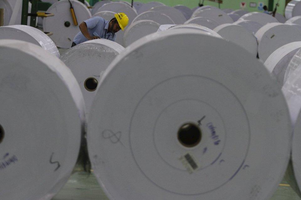 Ekspor Pulp dan Kertas, Industri Kertas