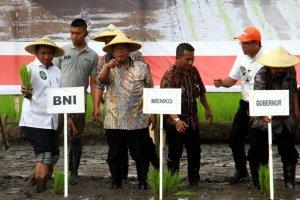 KUR BNI Wujudkan Drying Center untuk Petani Malang
