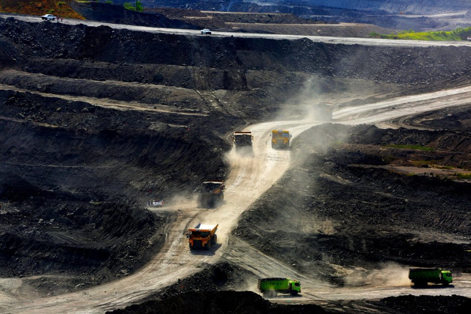 tambang batu bara, pajak