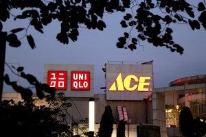 Uni Qlo dan ACE