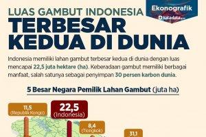 Luas Gambut Indonesia