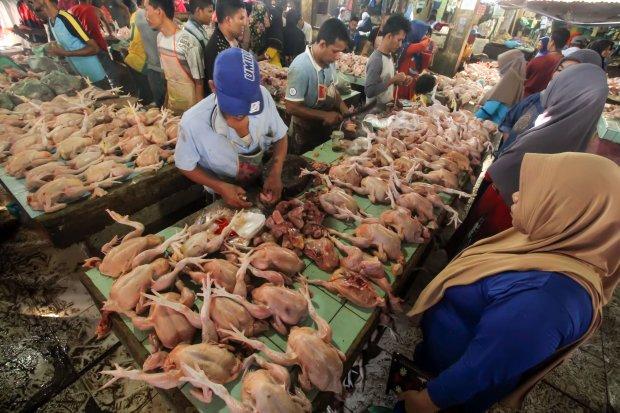 Kementan, harga bahan pangan, operasi pasar, TTI