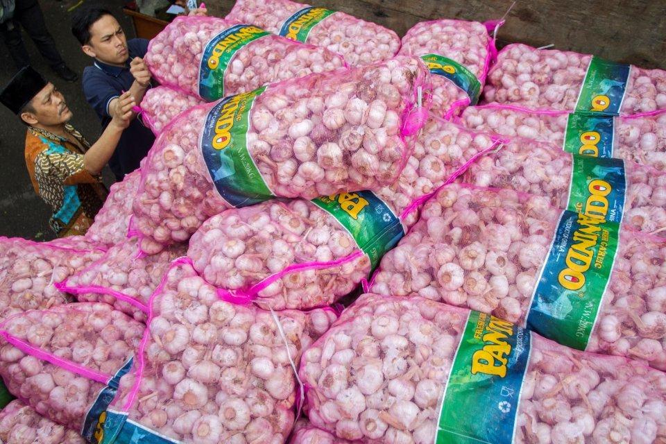 bawang putih, bawang putih impor